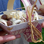Biodegradable Easter Basket Tutorial