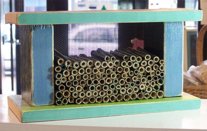 Upcoming Class: Build a Pollinator House